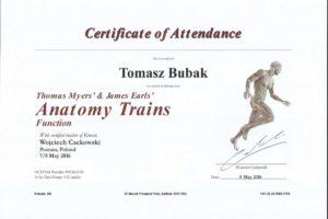 Certyfikat Anatomy Trains 1