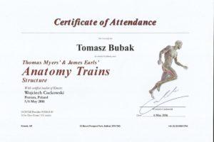 Certyfikat Anatomy Trains 2