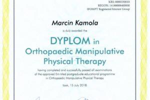 OMT dyplom